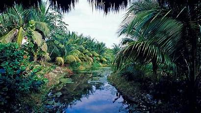 Tropical Desktop Wallpapers Backgrounds Destination Beach Nature