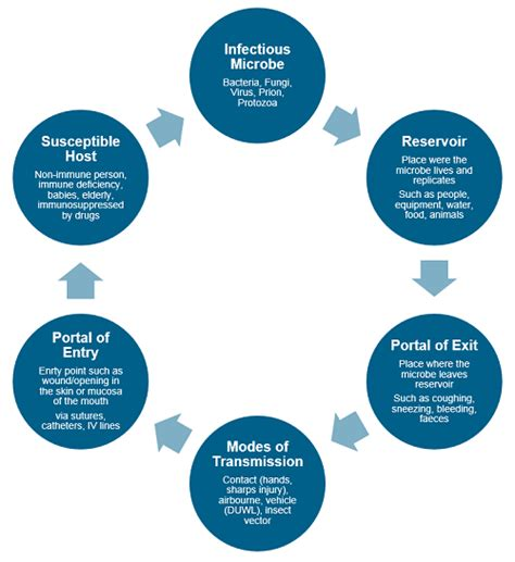 the chain of infection isopharm