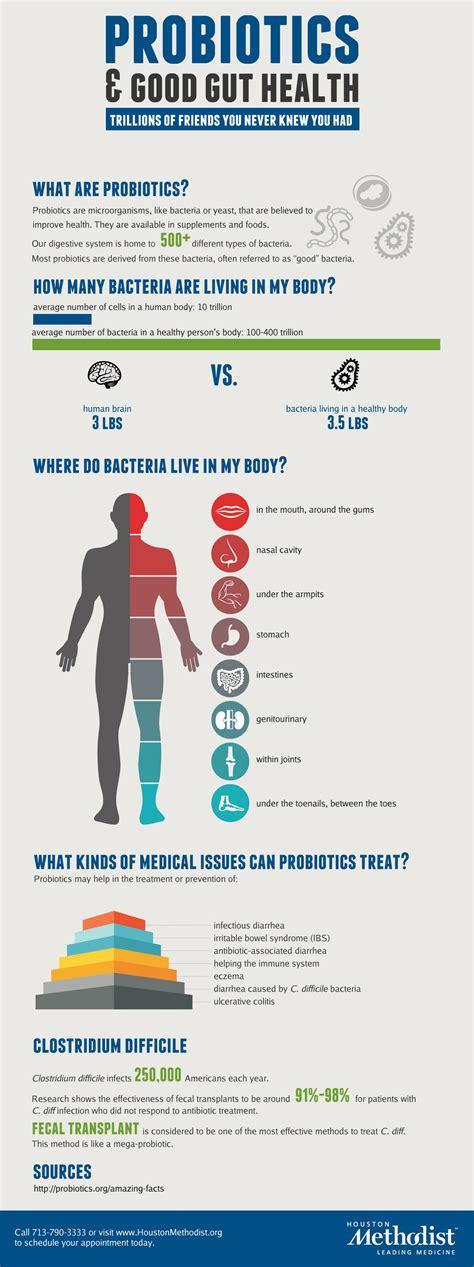 How do Probiotics Work - HRF