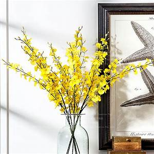 Popular Yellow Oncidium Orchid-Buy Cheap Yellow Oncidium