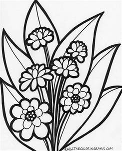 flower color page - summer flowers printable coloring pages free large images