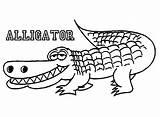 Alligator Coloring Crocodile Pages Printable Cute Alligators Outline Drawing Print Cartoon Realistic Animal American Insider Getdrawings Line Baby Getcolorings Drawings sketch template