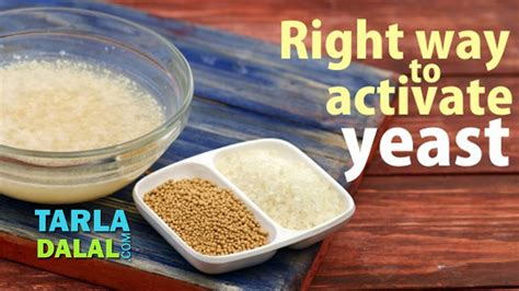 yeast food meaning  hindi food
