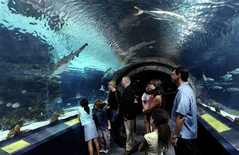 family attractions in los angeles usa the tour expert