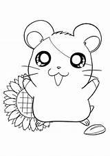 Hamtaro Coloring Printable Cartoons sketch template