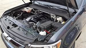 2015-up Colorado  U0026 Canyon Lsx  Ltx Engine Mounts