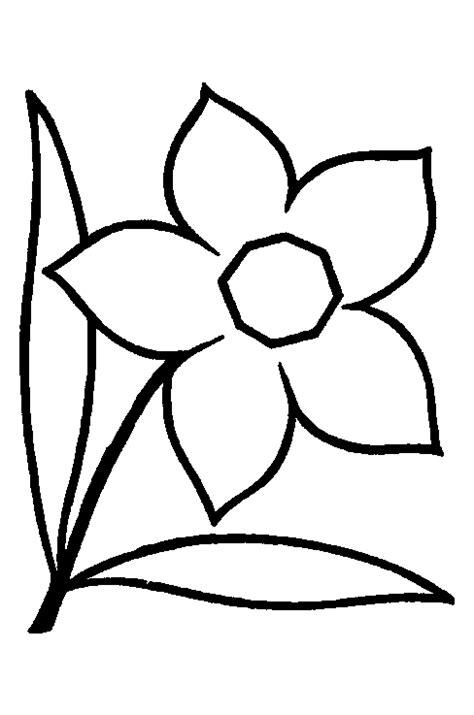 Kleurplaat Narcis kinderpleinen narcissen kleurplaten