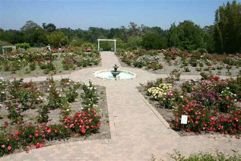 south coast botanic garden officiant