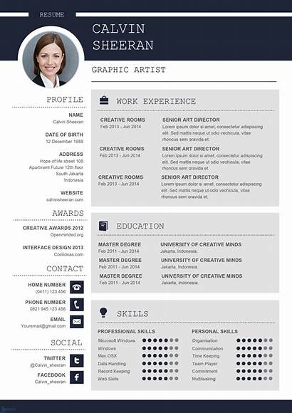 Cv Word Template Professional Ms Resume Downloadable
