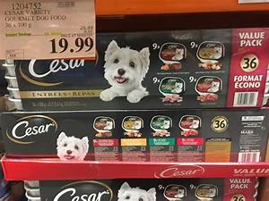 costco wet dog food With cesar dog food costco