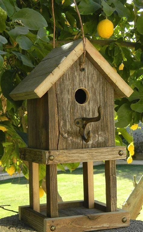 bird house kits  great bird houses  images