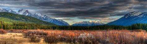 Fostermak – Making Art Known » Autumn in the Canadian Rockies