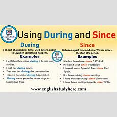 Using During And Since In English  English Study Here