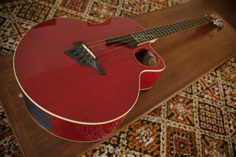 acoustic bass ab taylor rare electric amazing talkbass sold