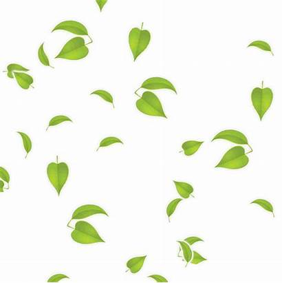 Leaf Animated Clipart Clip Trees Thanks Forest