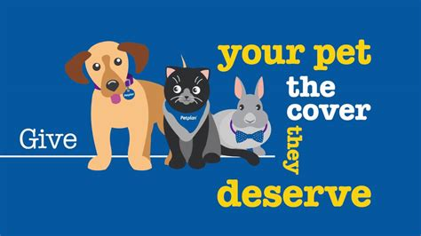 Our content is free because we may earn a commission when you click or make a purchase using our site. PetPlan Dog Insurance Reviews Advisor Dog