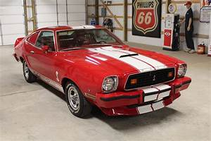 - SOLD - 1977 Ford Mustang Cobra II | gasvilleusa