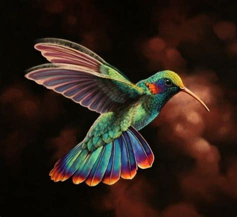 is this not the most beautiful hummingbird you ve ever