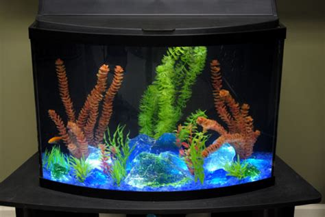 aquarium glass aquarium glass   gallery