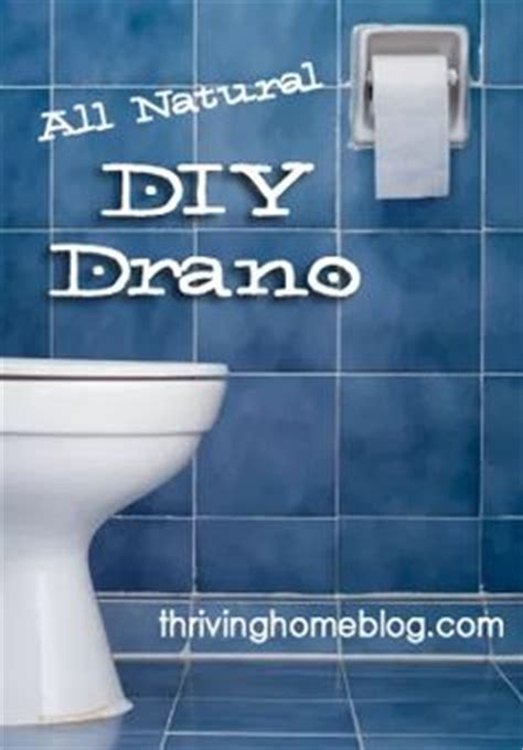 Diy Drano For Bathtub by 1000 Ideas About Clogged Toilet On Need A