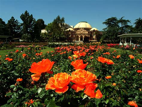 gardening in los angeles explore the beautiful gardens of los angeles discover