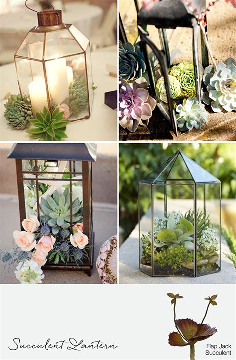 9 Ways To Decorate With Succulents For Weddings & Events