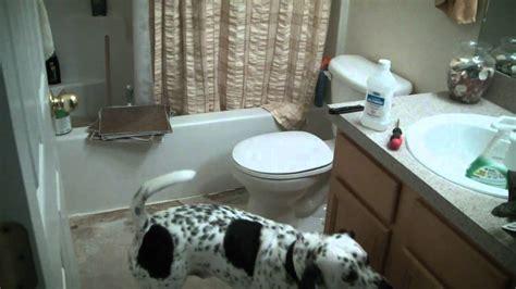 diy  stick tile laying bathroom renovation home
