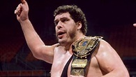 Andre The Gentle Giant Was Larger Than Life | DoYouRemember?
