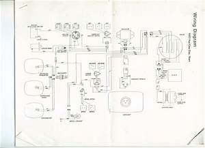Arctic Cat Jag Wiring Diagram For 1979