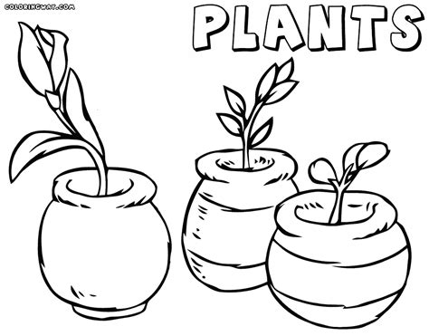 Coloring Pages To Download And Print