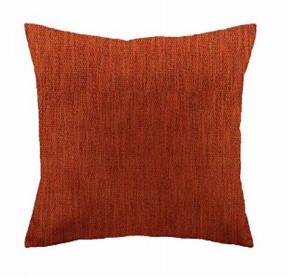 Cushion Plan Scatter Plain