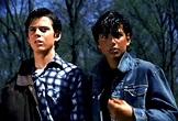 The Outsiders ***** (1983, Emilio Estevez, Rob Lowe, C ...