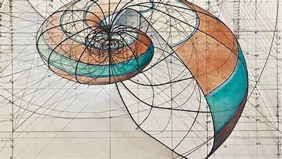 Ratio Golden Fibonacci Sequence Coloring Nature Araujo