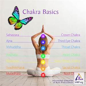 Chakra Basics  Learn What Chakras Are And Their Energetic Properties