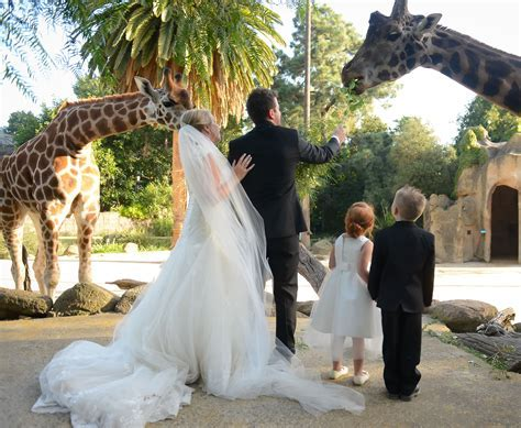 The Melbourne Zoo   Wedding Venues Parkville   Easy Weddings