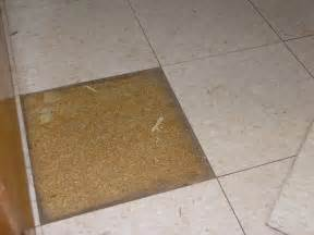 vinyl tile on particleboard a discussion at the floor pro community