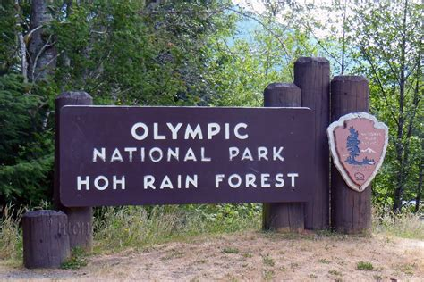Panoramio  Photo Of Entrance Sign At Olympic National. Hotel French Signs. Fresh Cut Flower Signs Of Stroke. Brass Signs. Charcot Signs Of Stroke