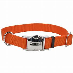 Coastal Adjustable Dog Collar with Metal Buckle