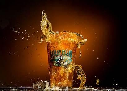 Beer Splash Glass Barley Close Dog Island
