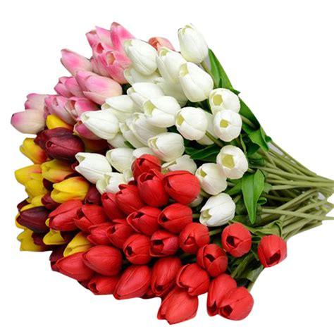 fiori in lattice acquista all ingrosso piante in lattice da