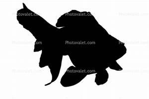 Fantail Goldfish silhouette, logo, shape Images ...