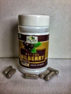 bilberry kapsul hpai obat herbal manjur komsumsi bilberry hpai mata minus