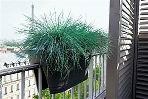 Jardiniere Plastique Gros Volume : balcon et terrasse page 37 paris c t jardin ~ Dailycaller-alerts.com Idées de Décoration