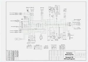 Bicycle 49cc Wiring Diagram 25784 Netsonda Es