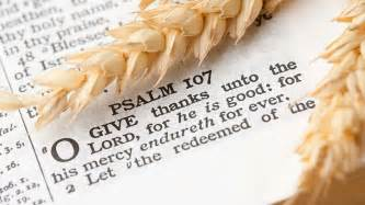 15 of the best thanksgiving bible verses 2017 to make your glad