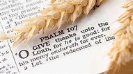 Thanksgiving 2015 Bible Verses for Your Cards: Ten Best ...