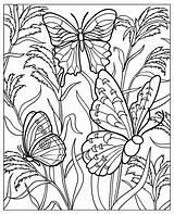 Coloring Butterflies Print Simple Pages Papillons Plantes sketch template