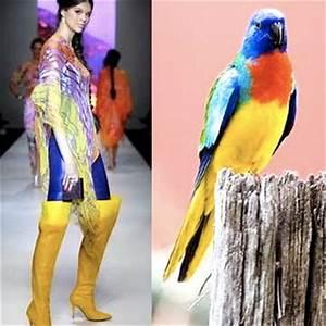 Fashion Bird Erfahrungen : fashion gloversville hs studio art ~ Markanthonyermac.com Haus und Dekorationen