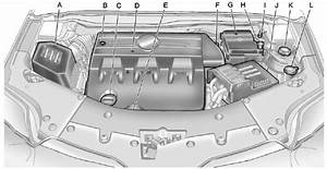 Engine Compartment Overview    Vehicle Checks    Vehicle