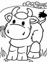 Coloring Cows Animal sketch template